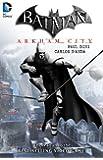 Batman: Arkham City (Batman (DC Comics))