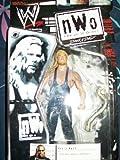 WWF WWE NWO BACK AND BAD- KEVIN NASH