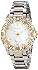 Citizen Women's EM0234-59D Drive from POV Analog Display Japanese Quartz Two Tone Watch