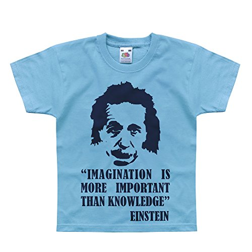 Einstein Quotes Imagination Is More Important Than Knowledge: Nutees Einstein Imagination Is More Important