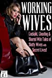 img - for Working Wives: Cuckold, Cheating and Shared Wife Stories of Slutty Wives with Secret Lives book / textbook / text book