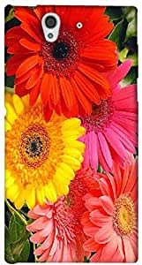 Timpax protective Armor Hard Bumper Back Case Cover. Multicolor printed on 3 Dimensional case with latest & finest graphic design art. Compatible with Sony L36H - Sony 36 Design No : TDZ-26738