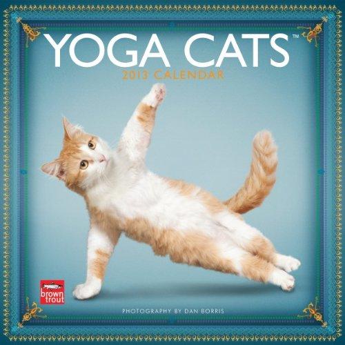 Yoga Cats 2013 Calendar