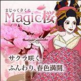 ≪TBS★ひるおび!で紹介≫マジック桜(マジックサクラ/Magic 桜)