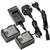 DSTE® 2pcs BP-808 Replacement Li-ion Battery + Charger DC26U for Canon BP-807, BP-808, BP-809 and Canon FS200, FS300, FS400, FS21, FS22, FS31, FS40