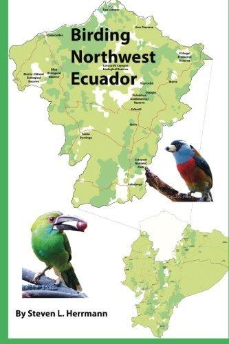 Birding Northwest Ecuador