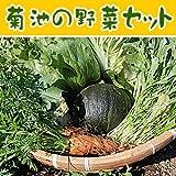 冨田さんちの無農薬野菜セット【5品】