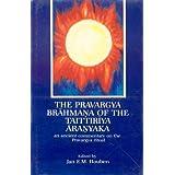 The Pravargya Brahmana of the Taittiriya Aranyaka: An Ancient Commentary on the Pravargya Ritual
