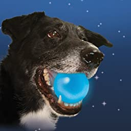 Nite Ize MeteorLight LED Light Up K9 Ball Glowing Dog Toy Float Color:Blue Size:Pack of 2