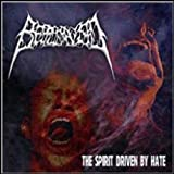 """Afficher """"The Spirit driven by hate"""""""