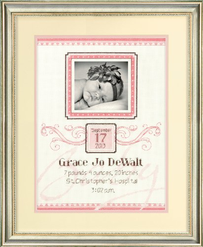 Dimensions Needlecrafts Counted Cross Stitch Kit, Elegant Flourish Birth Record front-554204