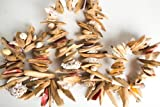 Hinterland Trading Seashell Driftwood Nautical Garland 72