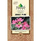 PYRAMID SEEDS ABOLI PINK (200 SEEDS)