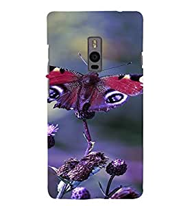 PrintVisa Butterfly Design 3D Hard Polycarbonate Designer Back Case Cover for One Plus Two