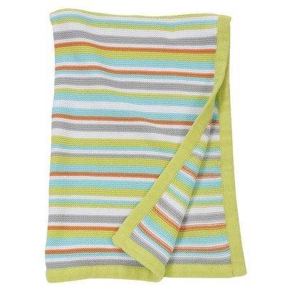 Sumersault Blue Stripe Blanket