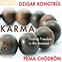 Karma: Finding Freedom in This Moment  by Pema Chödrön, Dzigar Kongtrul Rinpoche