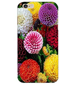 APPLE IPHONE 6 PLUS FLOWERS Back Cover by PRINTSWAG