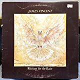 JAMES VINCENT waiting for the rain LP Mint- WLP Promo JZ 34899 Caribou 1978 USA