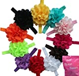 Qs 11 Pieces Babys Headbands Girls Chiffon Headband Hair Flower (11 Pack)