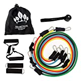 Micrael Home Heavy Duty Resistance Bands Set Including Non Snap Exercise Bands, Safe Door Anchor, Ankle Straps, Foam Handles, Carry Pouch with Exercise Starter Guide - Home Body Stretch Power Workout
