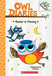 Book Cover: Baxter is Missing: A Branches Book