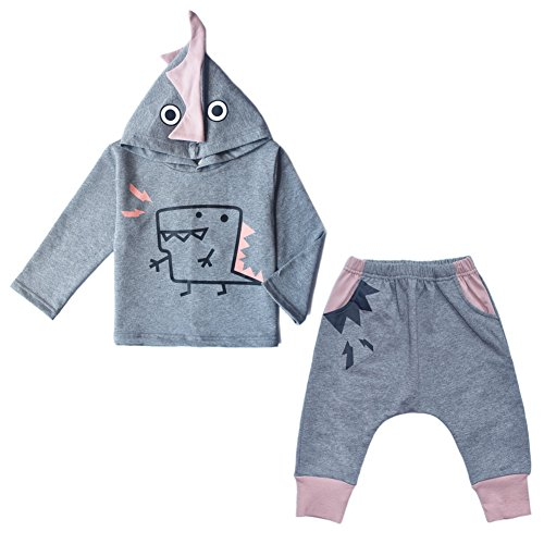 JiaDuo Baby Boys Girls Cotton Hoodie Pant Clothing Set Cartoon Dinosaur 14-18M (Baby Dinosaur Cartoon)