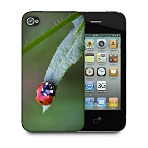 Snoogg Small Beatel Designer Protective Phone Back Case Cover For Apple Iphone 4