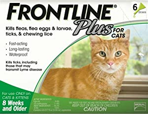 Amazon.com : Merial Frontline Plus Flea and Tick Control for Cats and