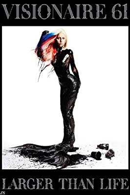 Lady GaGa Super Music Star Nice Silk Fabric Cloth Wall Poster Print (36x24inch)