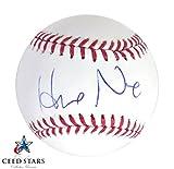 野茂英雄 スイートスポット 直筆サイン入り MLB公式ボール JSA社 筆跡鑑定シリアルナンバー証明書付き シードスターズ証明書付き