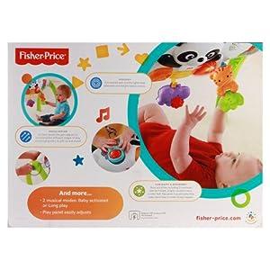 Mattel Y6588 - Fisher Price Baby Gim mit Panda