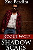 img - for Shadow Scars: Rogue Wolf (Haven City Series #1) book / textbook / text book