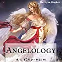 Angelology: An Overview (       UNABRIDGED) by Marilynn Hughes Narrated by Ray Cole