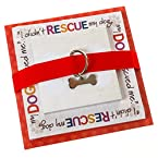 Stacked Rescue Dog Memo Pads