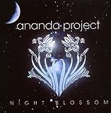 echange, troc Amanda Project, Chris Brann - Night Blossom