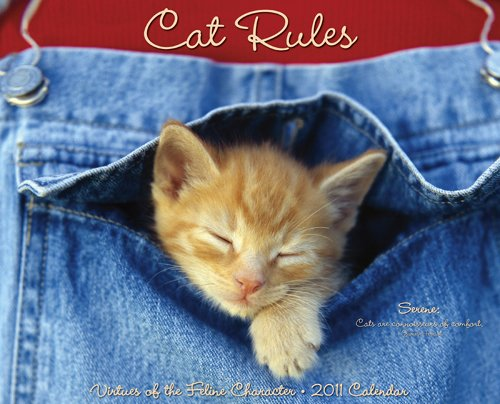 Cat Rules 2011 Wall Calendar