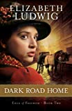 Dark Road Home (Edge of Freedom)