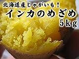 インカのめざめ お得用 5kg (サイズ無選別) 北海道産地直送じゃがいも インカの目覚め ジャガ芋