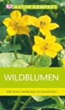 Wildblumen (3831023476) by Neil Fletcher