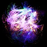 Morning Glory Fiber Optic Battery String Light Four Colors 13011358