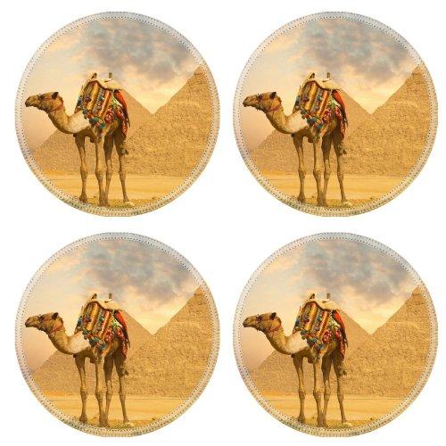 Camel Drink Bottle front-698968