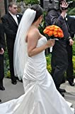 Used Pronovias wedding gown. Worn 1 time - 2011 Has been professionally preserved since 2011 Cut to a size 10 Comes with finished cathedral veil