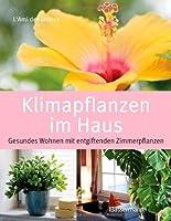 Klimapflanzen im Haus: Gesundes Wohnen m...