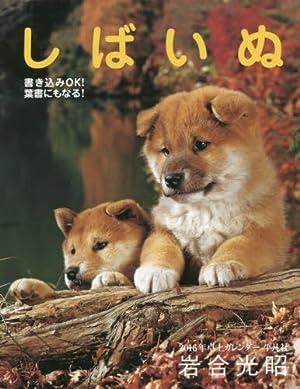 2016年卓上カレンダー しばいぬ ([カレンダー])