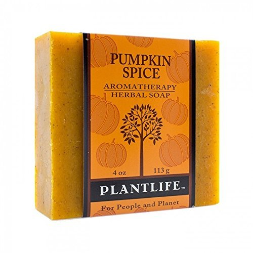 Pumpkin-Spice-100-Pure-Natural-Aromatherapy-Herbal-Soap-4-oz-113g