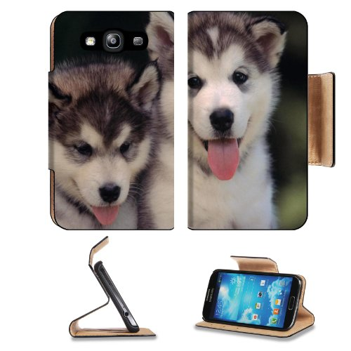 Cute Fluffy Husky Puppies Two White Samsung Galaxy S3 I9300 Flip Cover Case With Card Holder Customized Made To Order Support Ready Premium Deluxe Pu Leather 5 Inch (132Mm) X 2 11/16 Inch (68Mm) X 9/16 Inch (14Mm) Msd S Iii S 3 Professional Cases Accessor front-936869