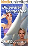 Bluewater Vengeance (Bluewater Thrillers Book 2)