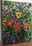 img - for Perennials (Time-Life Encyclopedia of Gardening) book / textbook / text book