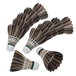 TOOGOO(R)12x Training Black Goose Feather Shuttlecocks Birdies Badminton Balls Game Sport