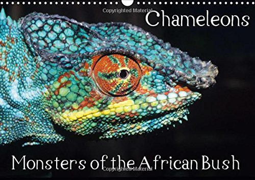 Chameleons Monsters of the African Bush (Wall Calendar 2016 DIN A3 Landscape): Striking Chameleon Portraits (Monthly calendar, 14 pages) (Calvendo Animals)